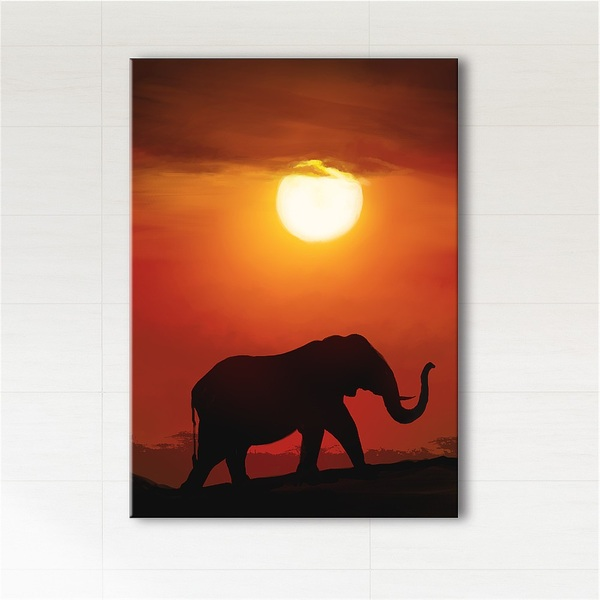 Picture - Africa, elephant - print on canvas