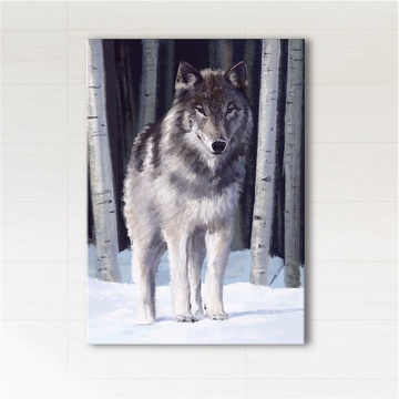 Picture - Gray wolf - print on canvas