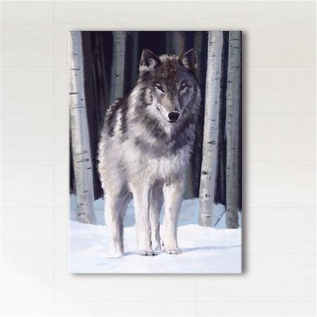 Obraz - Szary wilk  - wydruk na płótnie