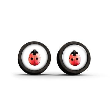 Wooden earrings - Ladybug - black